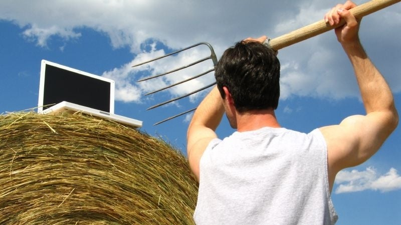 UK government delays new online farming payments system
