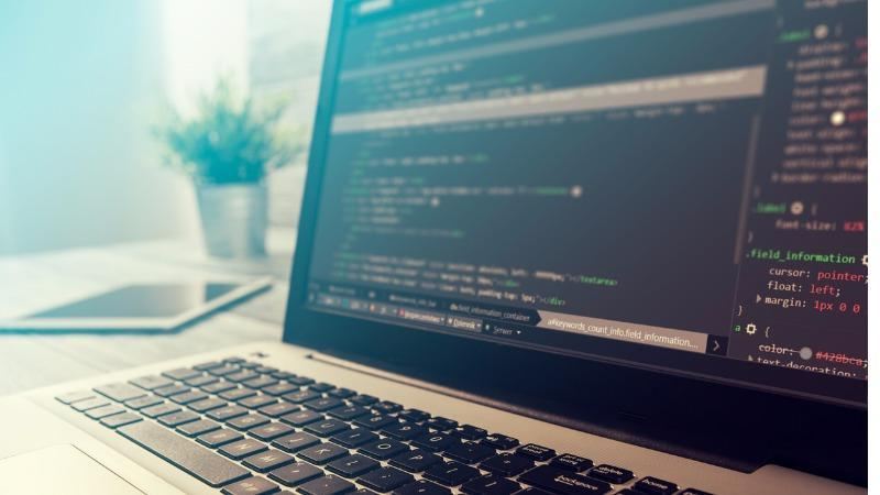.Net developers and IT project managers in demand