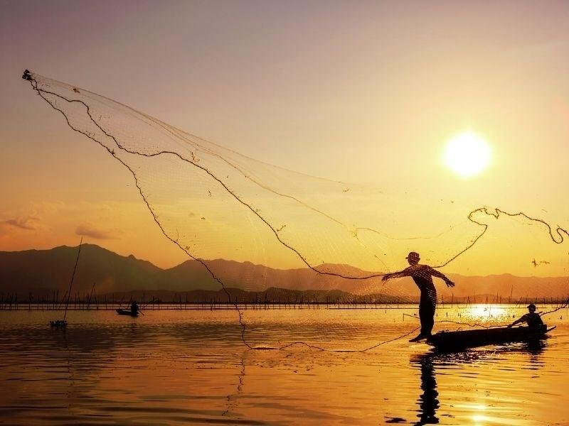 Cast a wider net