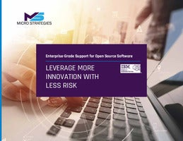 Enterprise-Grade Support for Open Source Software: Leverage More Innovation with Less Risk