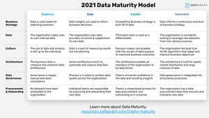 2021 Data Maturity Model