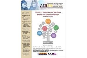 AZBSN report