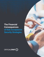 Financial Consequences of Risk Acceptance Security Strategies