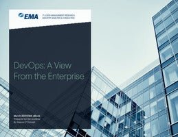 DevOps: A View From the Enterprise