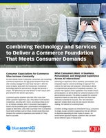 Combining Technology and Services to Deliver a Commerce Foundation that Meets Consumer Demands