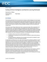 Scaling Artificial Intelligence and Machine Learning Workloads