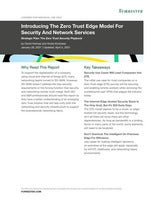 Forrester Report: Introducing the Zero Trust Edge Model for Security & Network Services